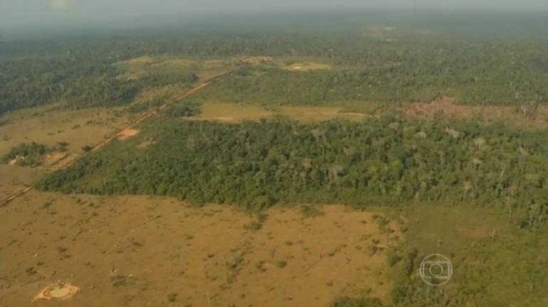 De acordo com o Imazon, uma área equivalente a 406 mil campos de futebol do tamanho do Maracanã foi destruída. (Imagem TV Globo)
