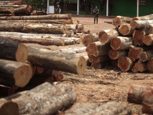 Agentes do Ibama inspecionam madeira ilegal apreendida na reserva indígena do Alto Guama, em Nova Esperança do Piriá (PA) (Foto: Ricardo Moraes/Reuters)