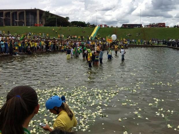 Manifestantes atiraram rosas no espelho d'água em frente ao Congresso Nacional (Foto: Mateus Rodrigues/G1)